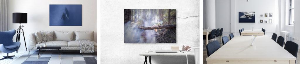 Julia Nance - fine art photography wall art for sale